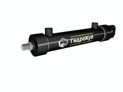 Threaded Hydraulic Cylinder with Cap Fixed Eye
