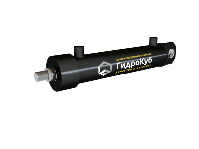 Welded Hydraulic Cylinder with Cap Fixed Eye with Spherical Bearing