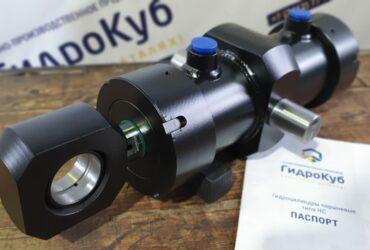 Hydraulic cylinder with pivot bolt, swivel lifting eye bolt fixture